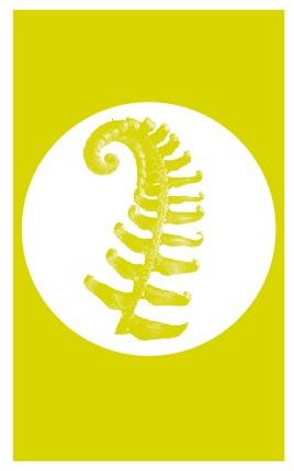 Hoveniersbedrijf De Groene Vingers - Arnhem