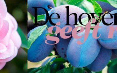 De hovenier geeft raad! – Augustus 2016