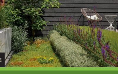 Vallei tuin met een moderne uitstraling