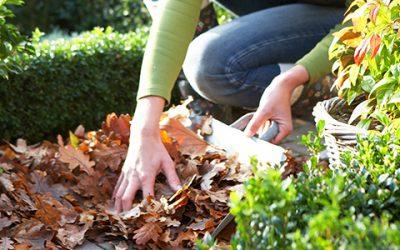 Is jouw tuin straks klaar voor de winter?