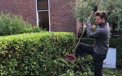 Chronisch zieke vrouw 63 kan tuin niet meer onderhouden. Hulp gevraagd!