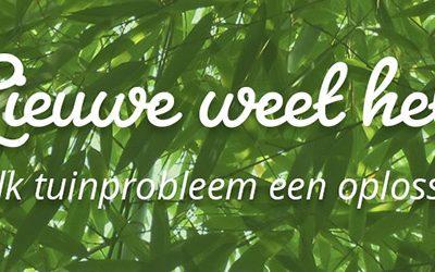 Woekerende bamboe – Lieuwe weet het