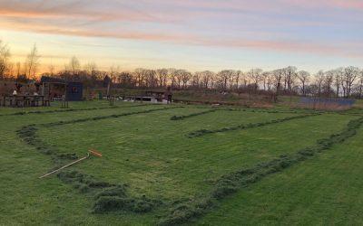 Blog: In de tuin van Jelle: Eerste gras