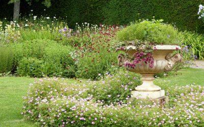 Advies van Lieuwe: Onkruidvrije tuin