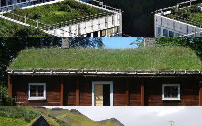 Subsidie op groene daken