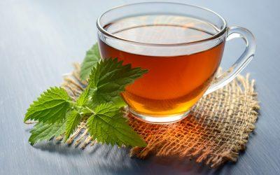Gezonde thee van eigen planten