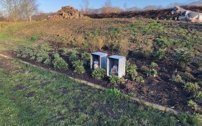 Blog: In de tuin van Jelle: Nieuwe border