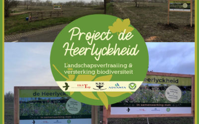 Project de Heerlyckheid: Project start