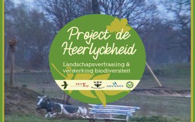 Project de Heerlyckheid: Eerste kijkers