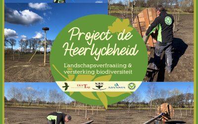 Project de Heerlyckheid: Oprichten ooievaarsnest