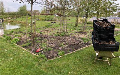 Blog: In de tuin van Jelle: Ijsheiligen voorbij Dahlia's erin